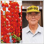 ほおずきは大きさ、色合い、粒の数が申し分なく、すぐ売り切れます。すべての野菜等に安心安全のHB-101を使用しています。